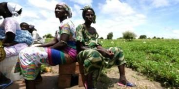 Au-Senegal-des-agriculteurs-s-adaptent-face-au-changement-climatique_article_popin-592x296