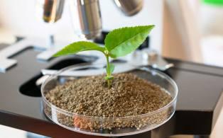 fertilisants-avec-matieres-premieres-originales-1-800