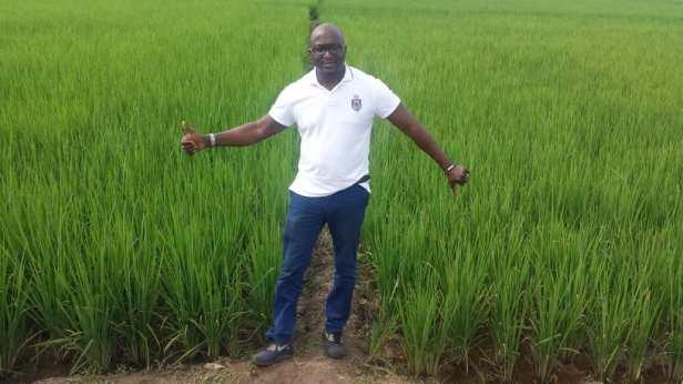 riz nafaso essai demi densite3